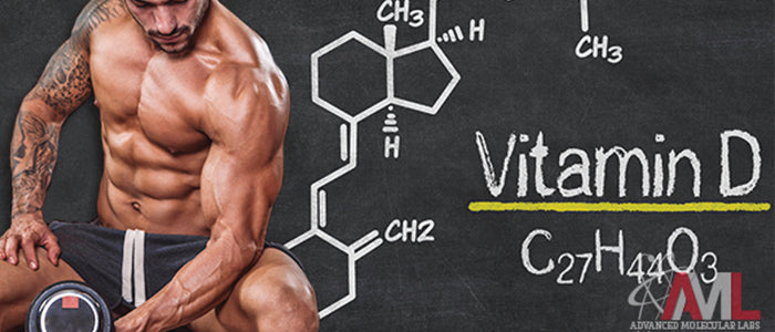 Vitamin D Promotes Muscle Function
