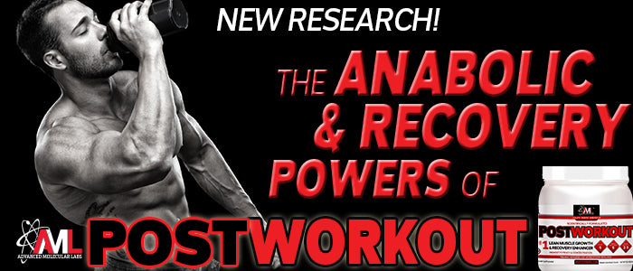 THE ANABOLIC & RECOVERY POWERS OF AML™ POST WORKOUT