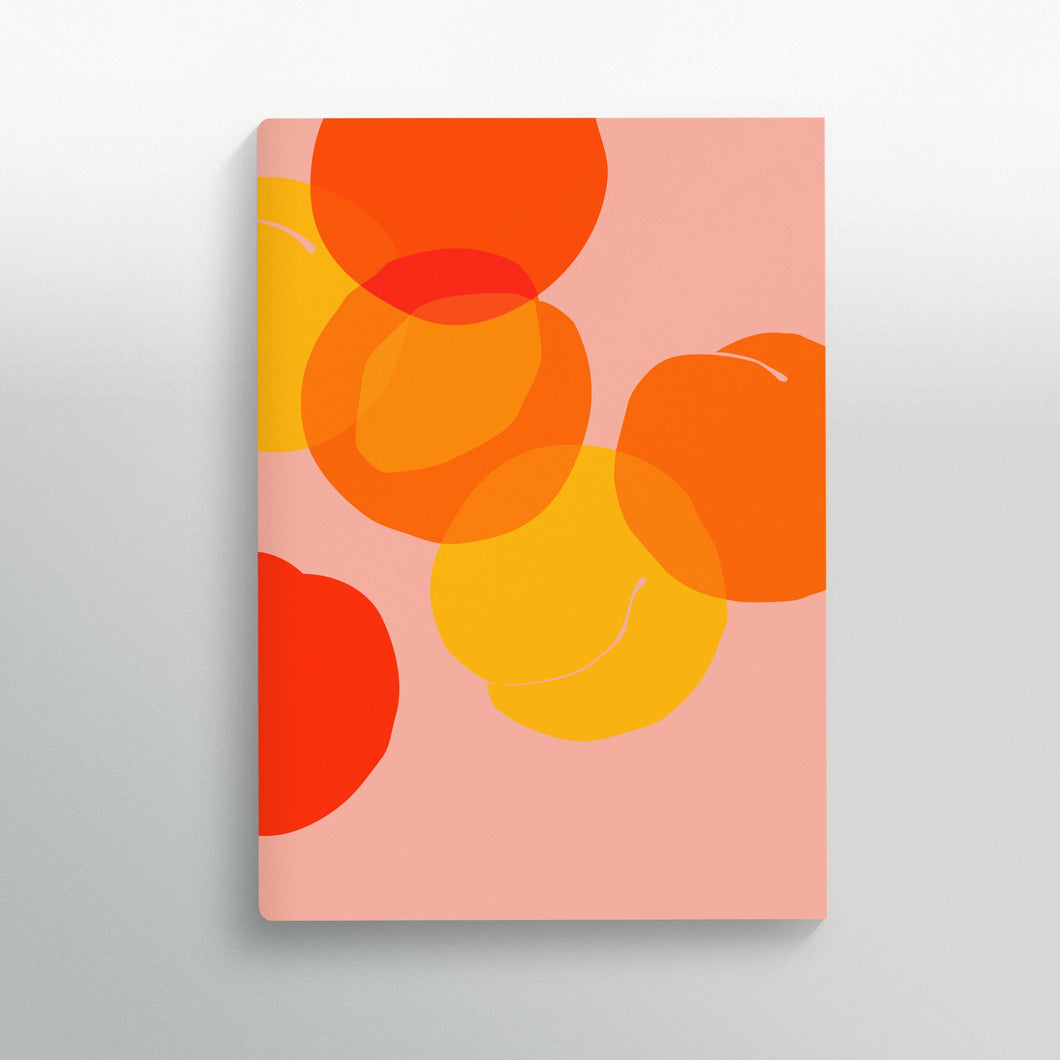 Common Modern Notebook In Season Apricots