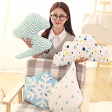 Plush Soft Decorative Pillow