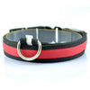 Image of Nylon LED Dog Collar - KayZ Pro