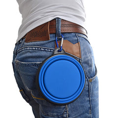Travel Feeding Bowl with Carabiner