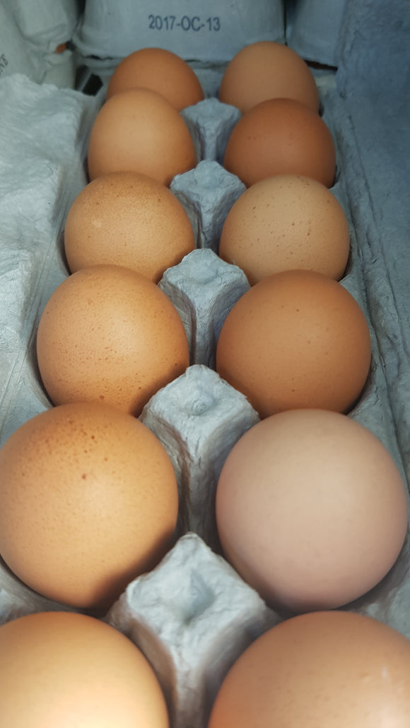 Britestone Happy Hen Eggs