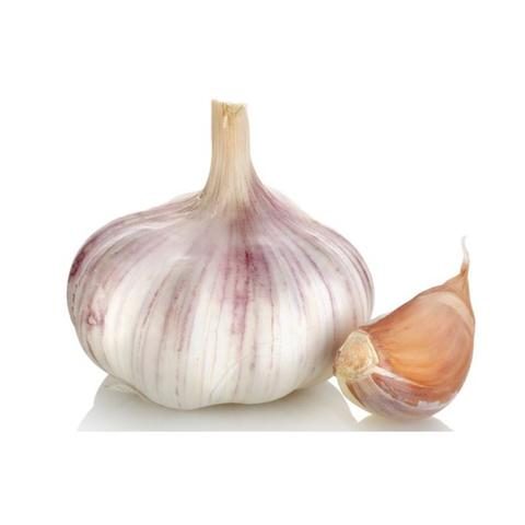 Garlic - Russian Red for pickling