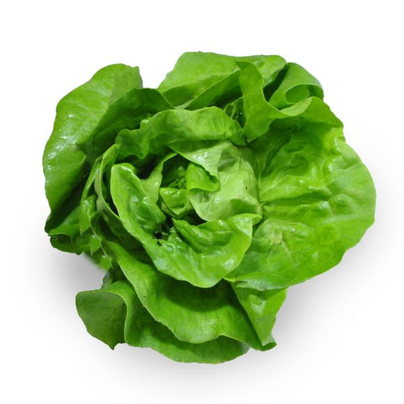 Greens Lettuce Spinach