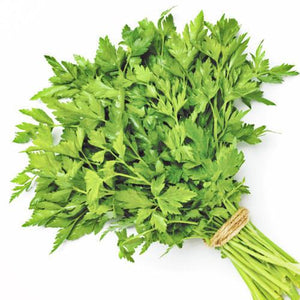 HERBS - Fresh Parsley, Cilantro, Mint, Basil, Watercrest, Dill