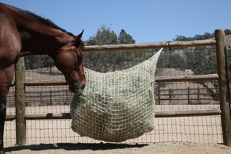 6-Flake Extended Day/2-String Bale Net