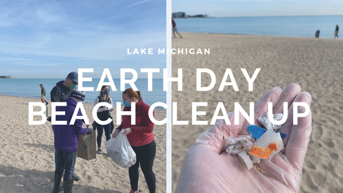 Cleaning Up Lake Michigan's Shore