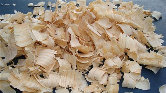 Pine Wood Shavings / Pet Bedding
