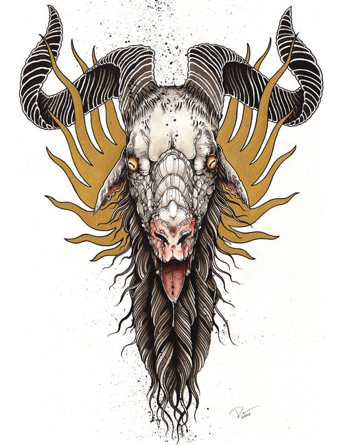 Derek Noble - Goat Head (Watercolor)