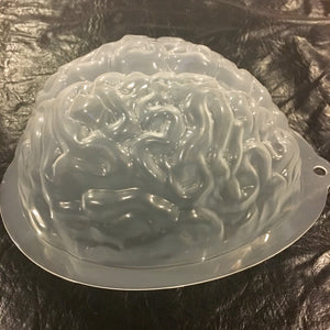 Plastic Brain Mold