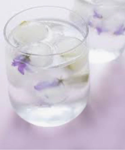 Coconut Water & Lavender