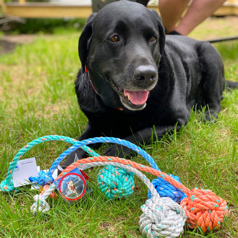 Floating Rope Fetch Toy