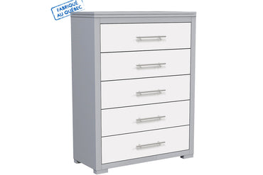 BARTON 5 DRAWER DESK - LIGHT GRAY AND WHITE