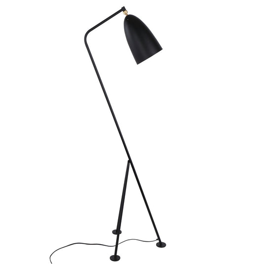 Paulina Floor Lamp