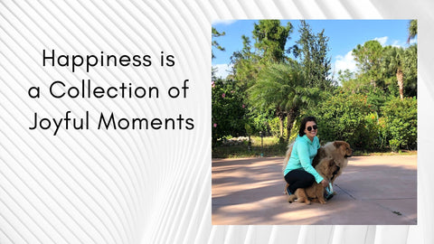Happiness is a Collection of Joyful Moments - N Baranes