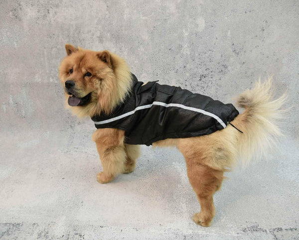 Doggie Puffer Dogwear The Eight Senses®