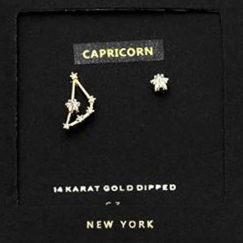 CARPRICORN CZ Star Earrings