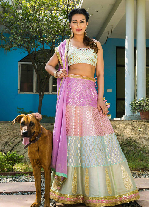 Pastel Banarsi Lehenga Set with Mirrorwork and Sequins Blouse Lehenga Avnni Kapur