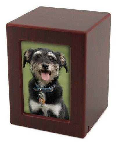 Small/Keepsake Cherry Wood  Funeral Cremation Urn with photo, 85 Cubic Inches