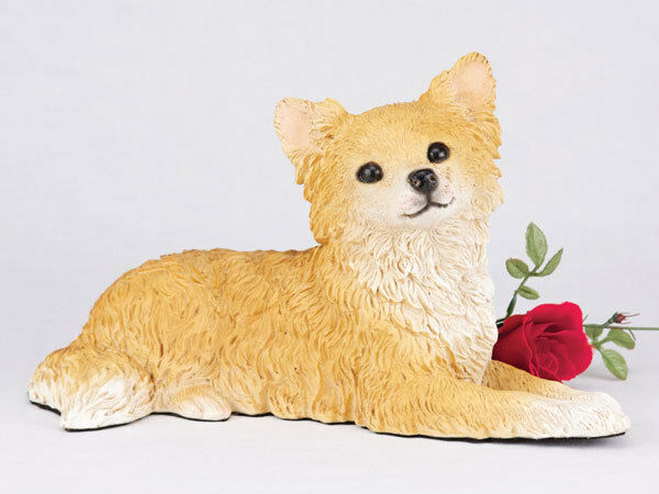 Large 110 Cubic Inches Orange & White Long Hair Chihuahua Resin Urn for Ashes