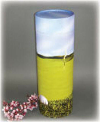 Biodegradable, Eco Friendly Adult Ash Scattering Tube Cremation Urn