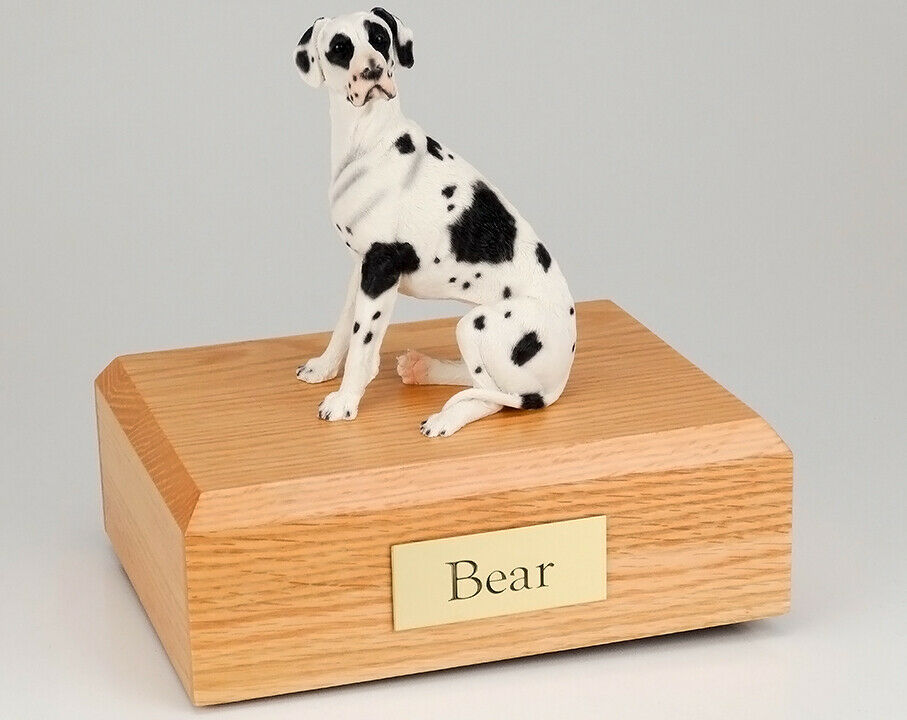Great Dane Harlequin Ears Down Pet Cremation Urn Avail in 3 Diff Colors 4 Sizes