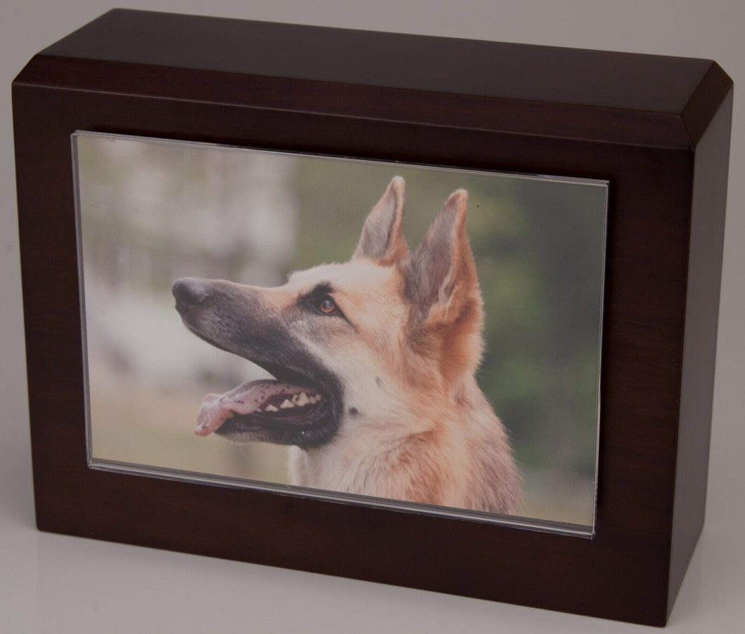 X-Large 145 Cubic Inches Walnut Pet Photo Urn for Ashes w/Engravable Nameplate