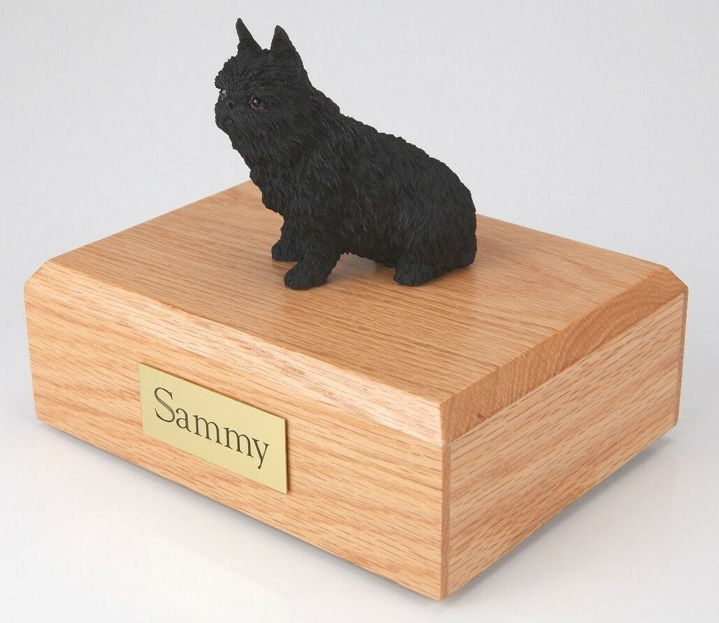 Brussels Griffon Pet Funeral Cremation Urn Available in 3 Diff Colors & 4 Sizes
