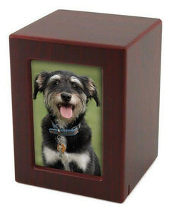 Small/Keepsake Cherry Wood  Funeral Cremation Urn with photo, 40 Cubic Inches