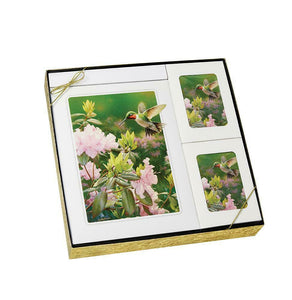 Hummingbird Theme Stationery Box Set & 200 Cubic Inch Funeral Cremation Urn
