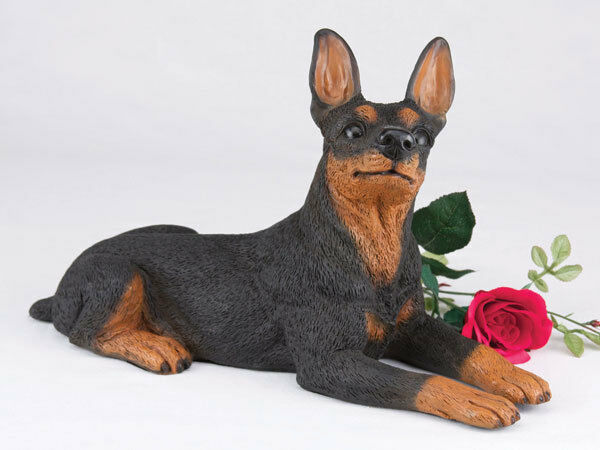 Large 130 Cubic Ins Black & Tan Miniature Pinscher Resin Urn for Ashes,Ears Up