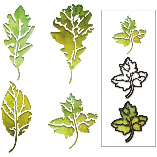Sizzix Tim Holtz Alterations Thinlits Die - Leaf Print