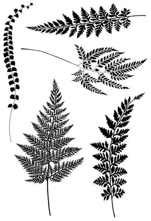 Woodware Clear Magic Singles Stamps - Ferns