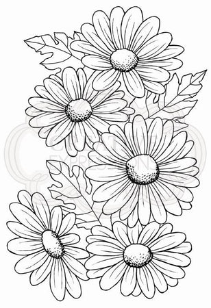 Woodware Clear Magic Stamp Set - Five Daisies