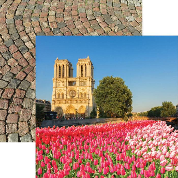 Reminisce France - Notre Dame