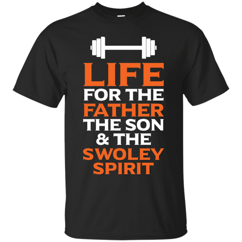 Distressed Father Swoley T Shirt Heather