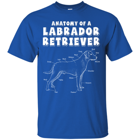 https://bwidow.com/products/anatomy-labrador-retriever-funny-owner