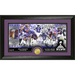 Baltimore Ravens Super Bowl XLVII Champions Bronze Coin Pano Photo Mint