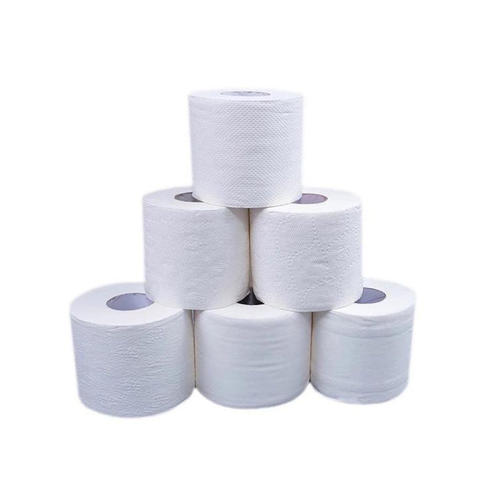 Roll Paper, 22.9 oz (pack of 12 rolls) (RP-1) Cleaning Supplies VizoCare