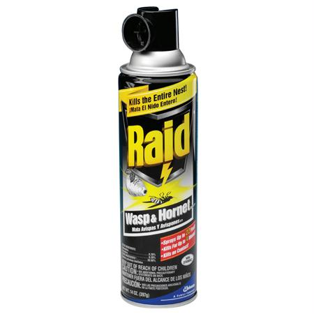 Raid Wasp & Hornet Killer(14 oz.)