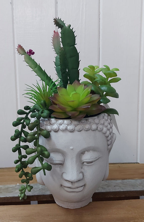 Succulent Buddha Pot 23cm 2 Assorted