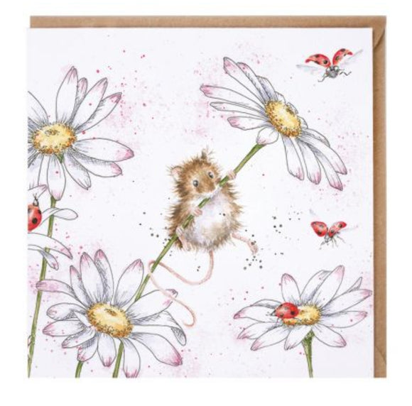 Opps a Daisy blank card By Wrendale