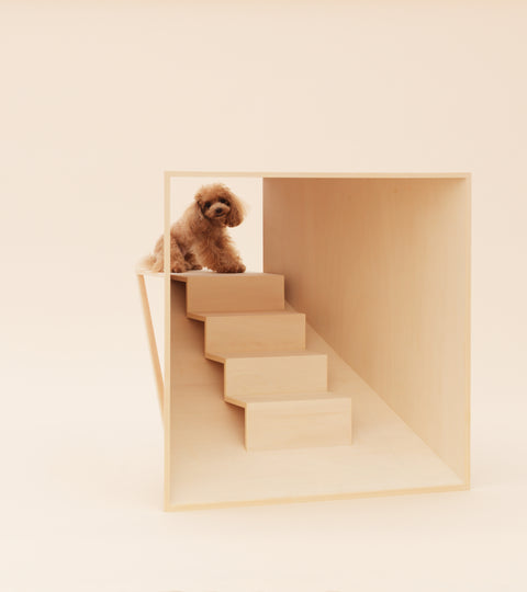 #LDF20 Architecture for Dogs, Japan House, London Design Festival