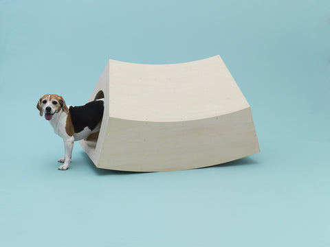 MVRDV Japan House Architecture for Dogs By Anna Paganelli LDF 2020