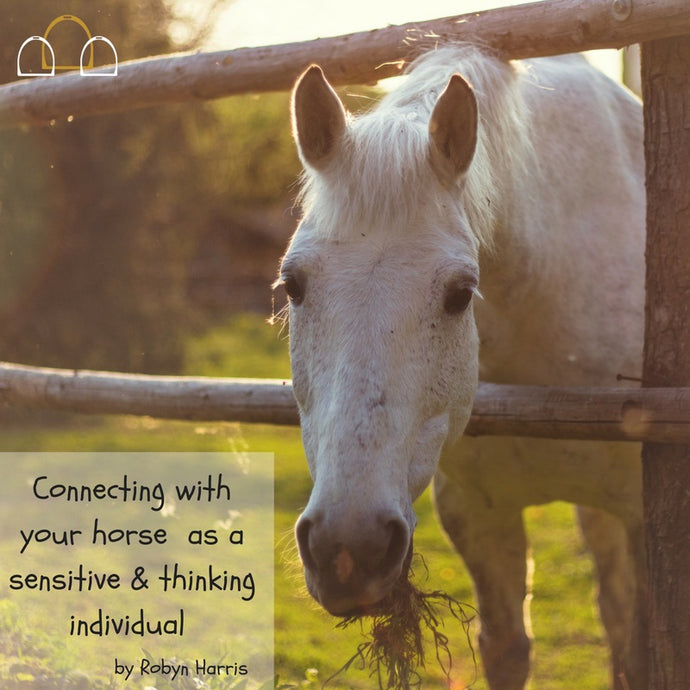 Connecting with your horse as a sensitive and thinking individual by Robyn Harris