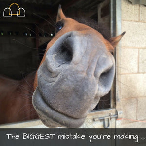 Biggest mistake dressage training