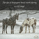 Top tips to help keep your horse warm during a cold snap!