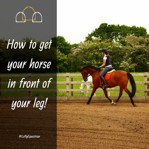 how to get your horse in front of your leg