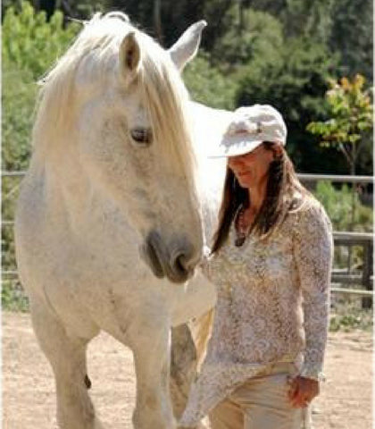 Horse and Rider wellbeing